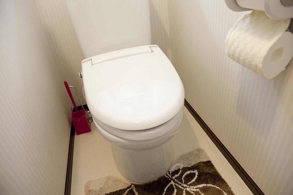 stylish_toilet